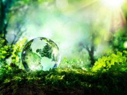 Milano Green Forum @ MiCo Milano Congressi | Milano | Lombardia | Italia
