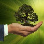 Sostenibilità: il nuovo regolamento UE sugli investimenti sostenibili